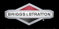 Pobierz obraz_Techamrk Rzeszów_logo Brigga&Stratton